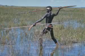 Australian Aborigine Hunting in Swamp