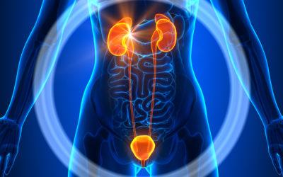 Nieuwe voedingsadviezen bij nierfalen
