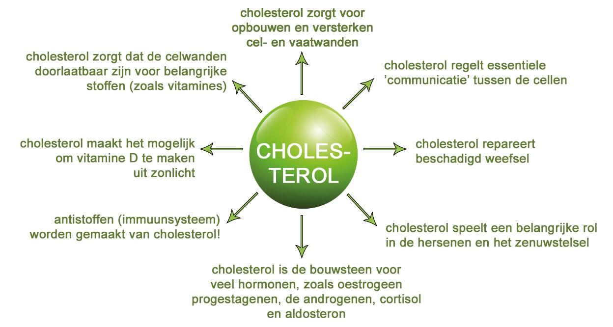 Cholesterol en de koolhydraatarme/keto aanpak