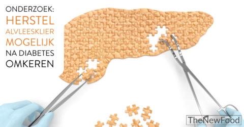 Onderzoek: Alvleesklier kan herstellen
